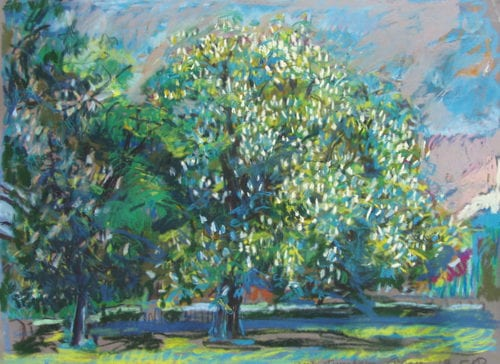 'Turnham Green Chestnut' by Isobel Johnstone