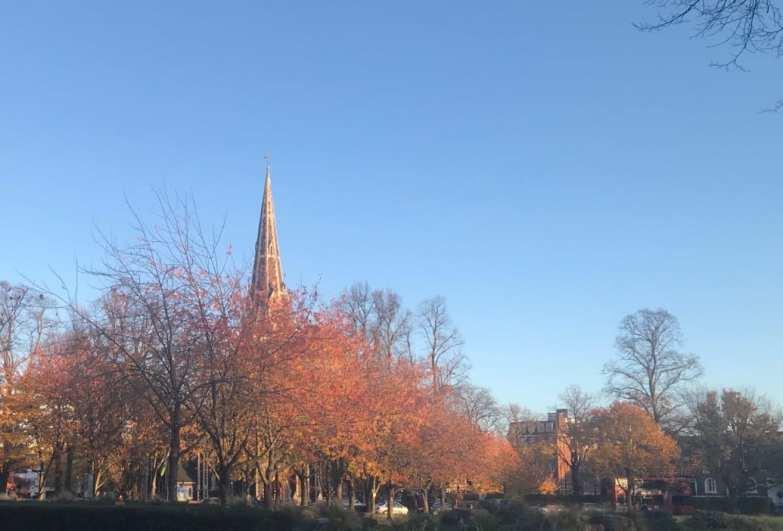 Christ Church in autumn bridget osborne