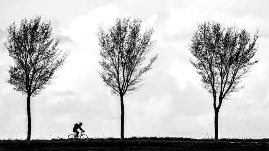 Cycling Home (Holland) by Anna Kunst