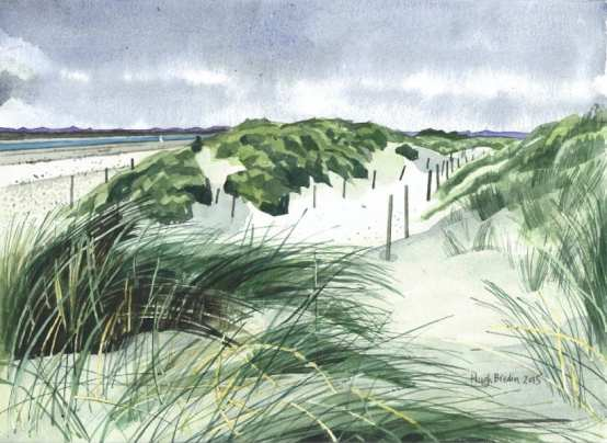 Reeds and dunes, West Wittering, West Sussex by Hugh Bredin