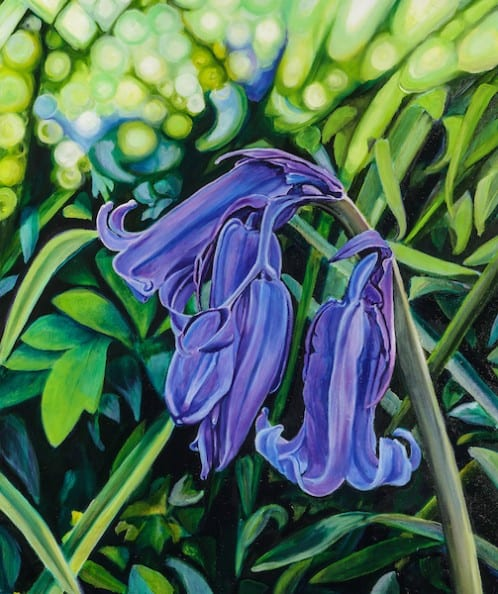 Bluebells Oil on Canvas. Unframed size (H X W): 61cm x 51cm by Debbie Pearce