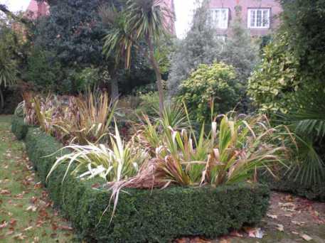Tracey & Ian's garden 1__web