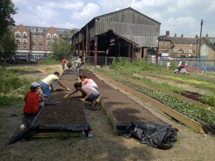 cultivate chiswick gardening planting vegetables