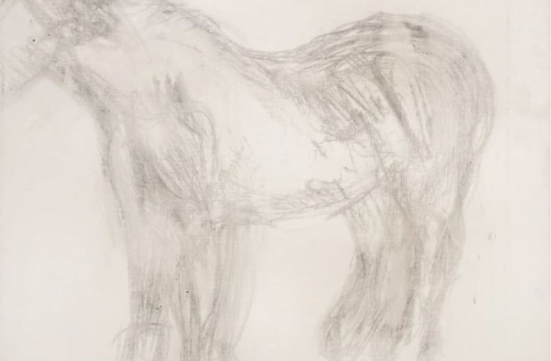 freud-sketch-of-horse-1