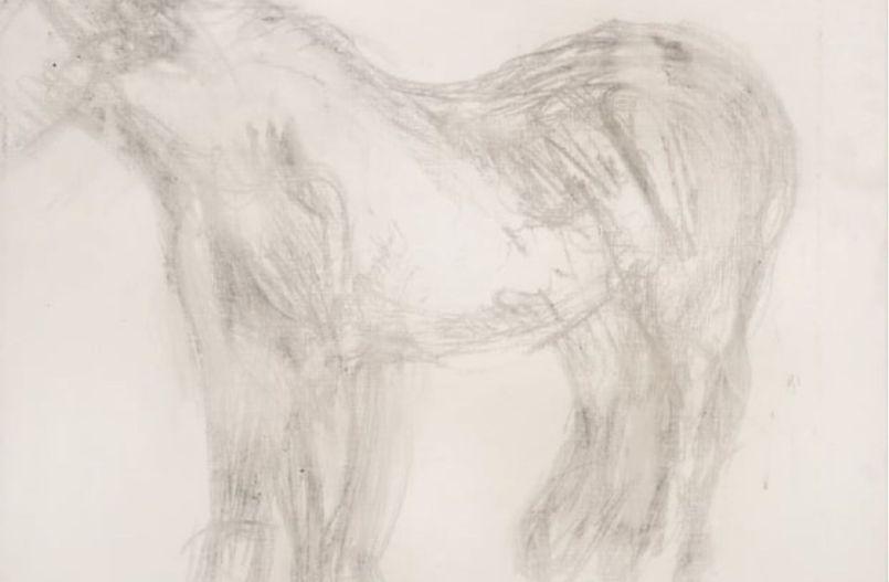 freud-sketch-of-horse-1