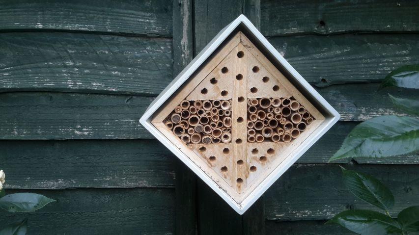 Bee hotel 1_web