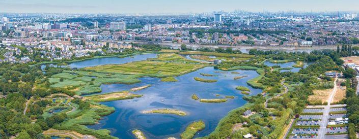 london wetlands