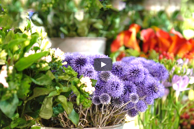 flower-market-video-home