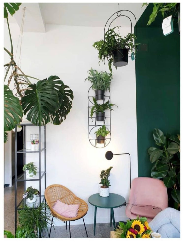 LIving room with plant holders