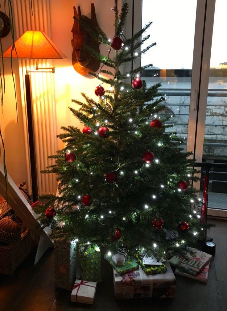 22 December Christmas Tree_web