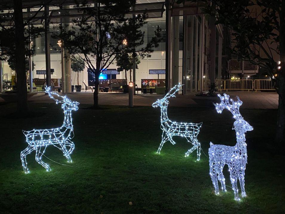 Christmas Business Park 11_web
