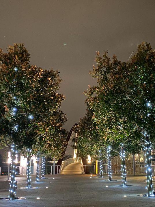 Christmas Business Park 12_web