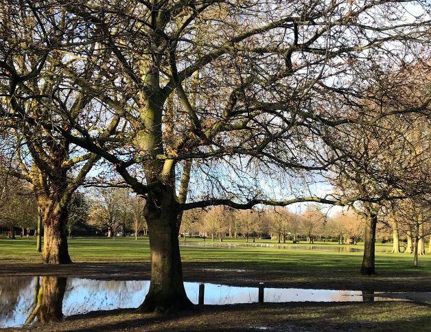 Ravenscourt Park Wet
