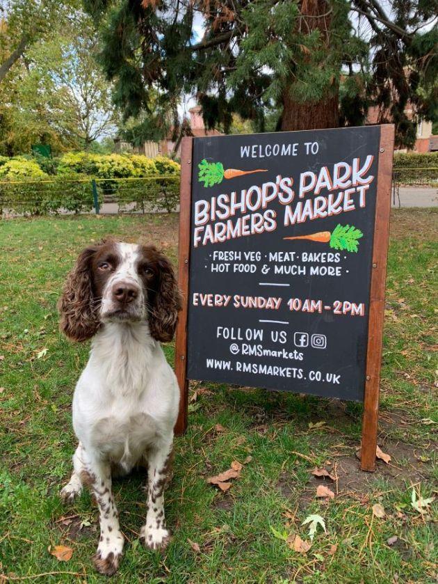 Bishops Park market image_web