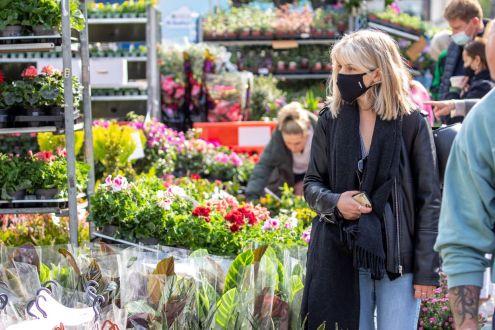 FlowerMarket-2738