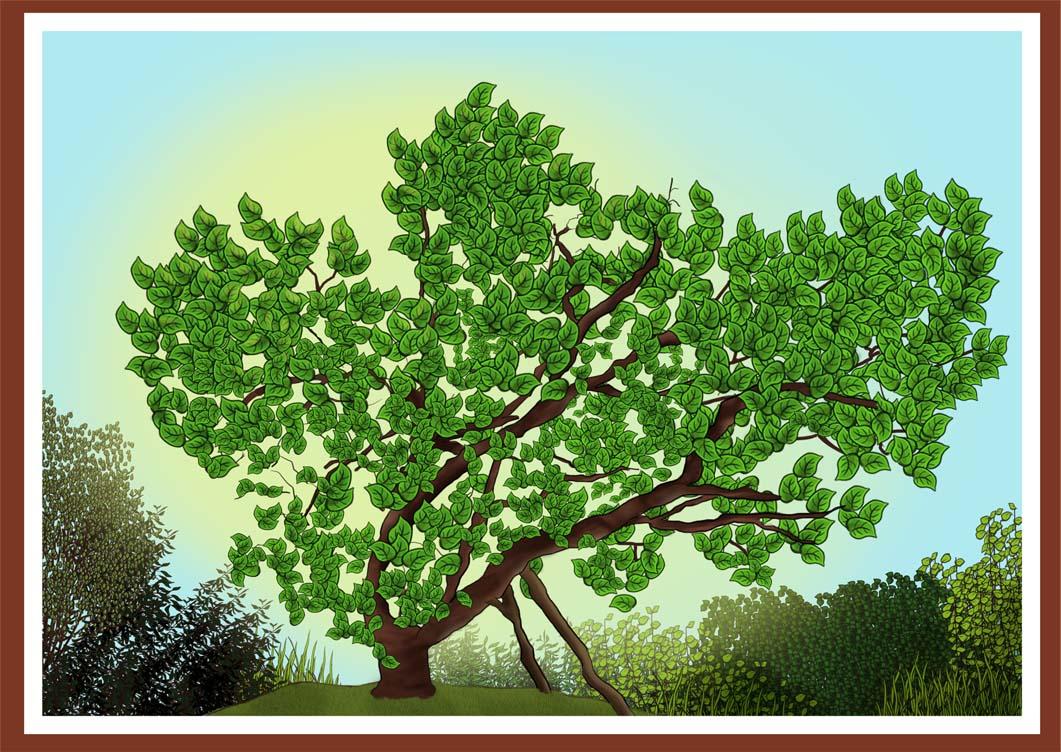 tree rgb for screen