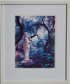 Glynis Porter, Pan's Wood - UID60