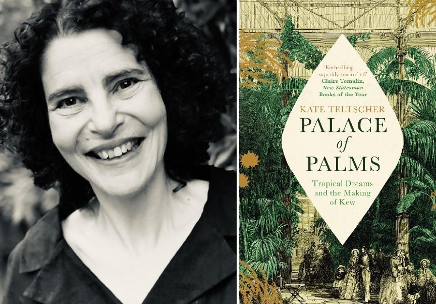 Palace of Palms photo-page0001_web