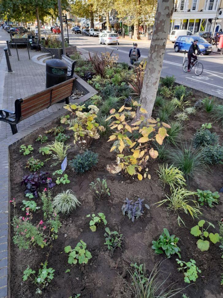 Chiswick Flower Market flower beds 5_web