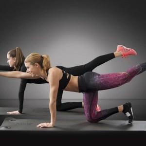 運動 フィットネス エクササイズ