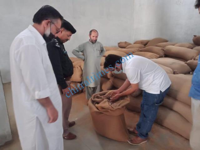 chitraltimes ac mastuj visit wheat goodown