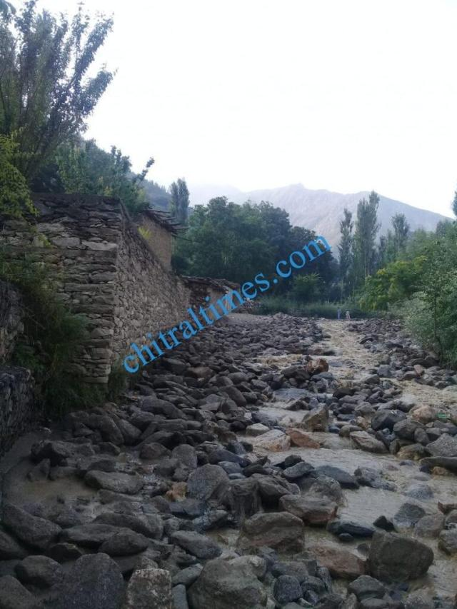 chitraltimes garamchashma flood chitral