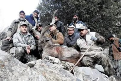 Villagers vacate pastures for conservation of markhors