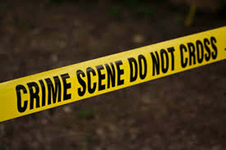 Honour killing case: girl's mother, five others under probe