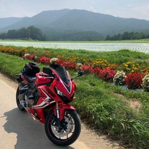 野辺山に向かうr016のお花と共にCBR650R