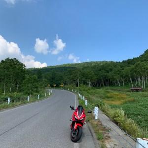夏の緑あふれる志賀草津道路風景・木戸池キャンプ場過ぎた辺りにてwith CBR650R②