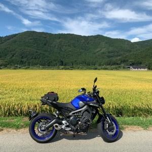 猪苗代湖東エリア内陸の黄金色風景with MT-09