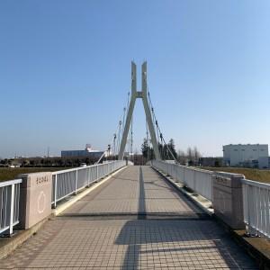 権現堂公園にかかる外野橋