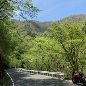深山湖を目指す山深いロード風景with CBR650R