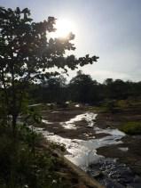 A tiny creek_11