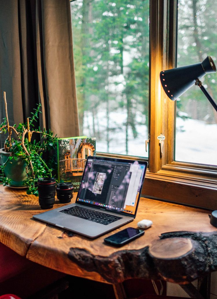 Prevent Burnout with Office Plants
