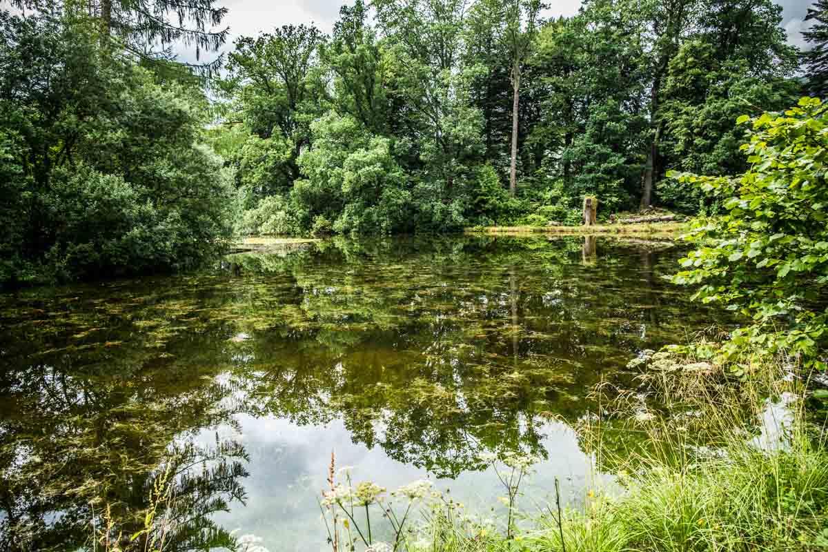 Ardkinglas lake set in the gardens. Edinburgh wedding photographer.