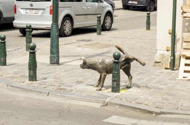 One day in Brussels: Zinneke Pis | #Brussels #Bruxelles #itinerary #Europe #peeingdog #bronzestatue #Belgian #humor #dog #MannekinPis #Landmark | www.ChloesTravelogue.com