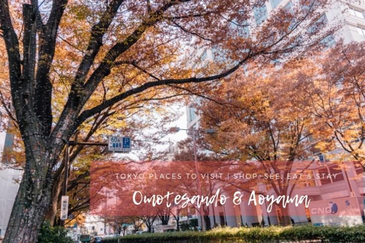 Tokyo Places to Visit | Omotesando Street | #Omotesando #Aoyama #Tokyo #Japan #OmotesandoArchitecture #OmotesandoCafe #OmotesandoHills #OmotesandoShopping #CatStreetTokyo
