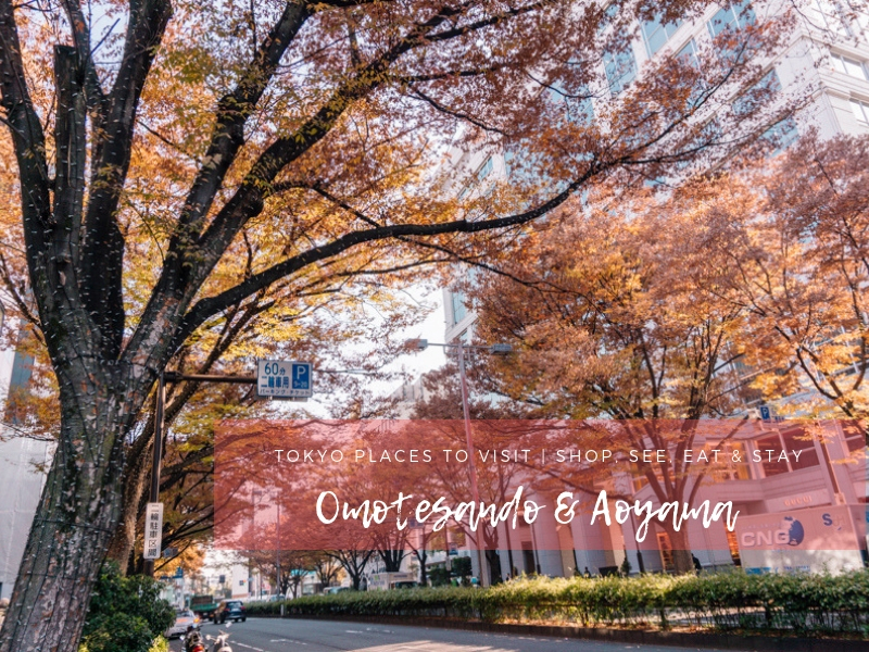 Tokyo Places to Visit | Things to Do in Omotesando & Aoyama
