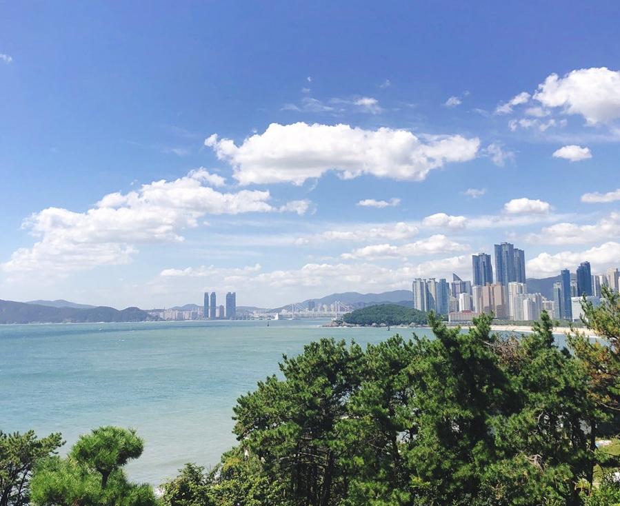 Busan Itinerary 5 Days (South Korea) | What to do in Busan Day 3 - Dalmaji-gil Road | #BusanItinerary #Busan #Korea #AsiaTravel #KoreaTravel #ThingstoDo #Haeundae #DalmajiHill