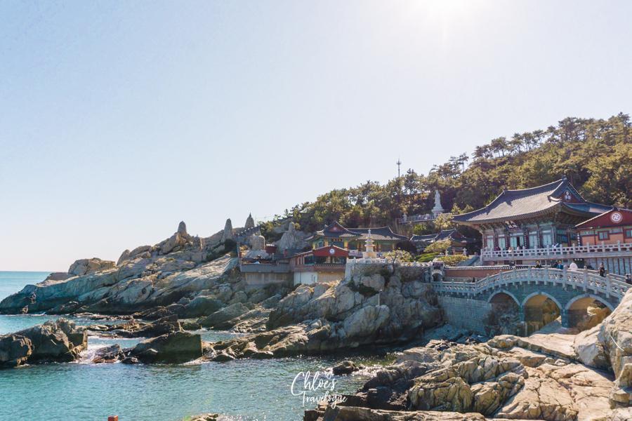 Busan Itinerary 5 Days (South Korea) | What to do in Busan Day 4 - Haedong Yonggungsa Temple | #BusanItinerary #Busan #Korea #AsiaTravel #KoreaTravel #ThingstoDo #Haedongyonggungsa #TemplebytheSea #Gijang #Oceanview #AsianTemples