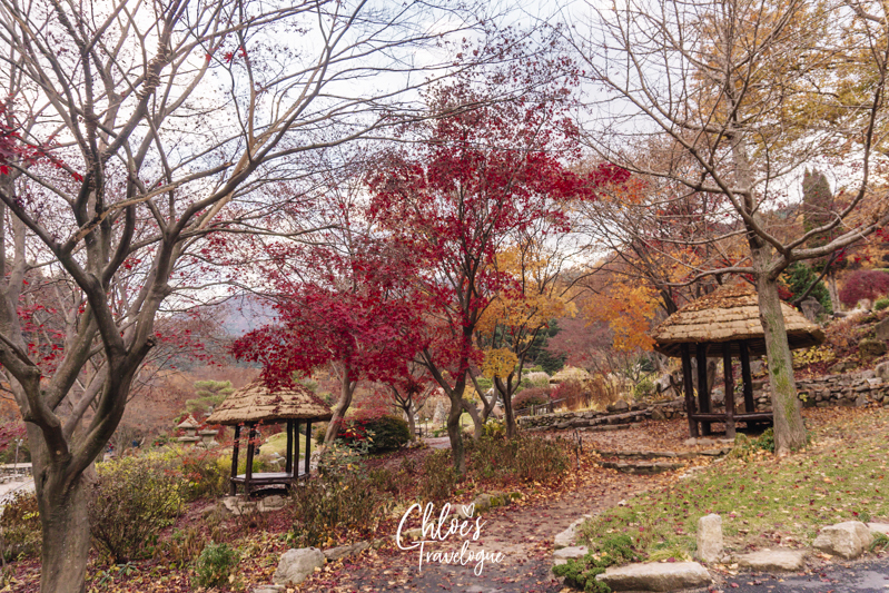 Garden of Morning Calm: Don't miss out on Korea's most beautiful arboretum and botanical garden on the hill of Mt. Chukryeong! | #GardenofMorningCalm #AutumninKorea #DayTripsfromSeoul #Korea #Gapyeong