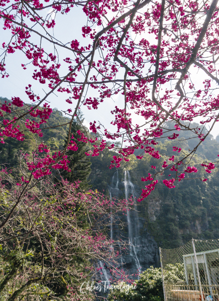 Things to Do in Wulai: Wulai Waterfall | #WulaiHotSpring #WulaiWaterfall #HotSpringsInTaiwan #thingstodoinWulai #TravelAsia