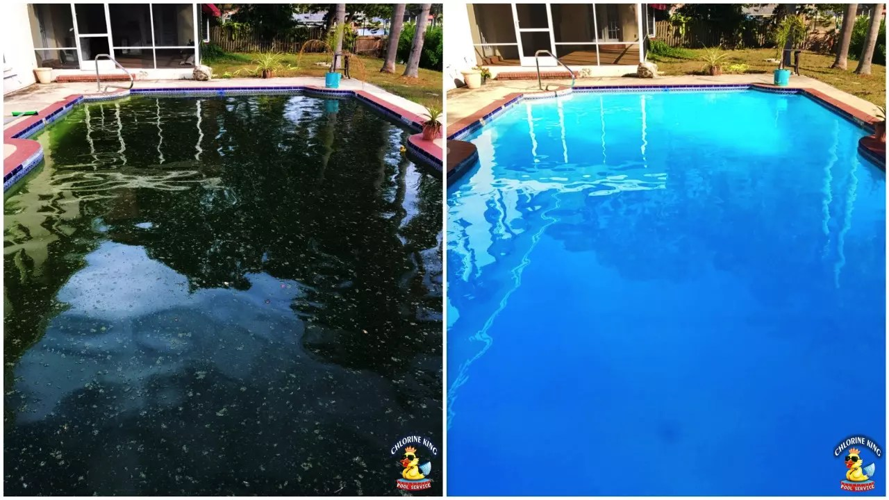 How To Clean A Pool Filter Our Work Chlorine King Pool Service