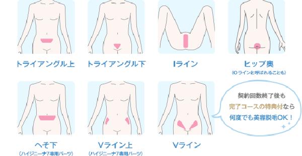 1.ハイジニーナ7 VIO脱毛コース