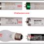 Bóng đèn UV, CWF, TL84, D65, F/A