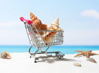 Despacho de supermercados a regiones para el verano 2021