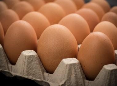 Huevos de gallinas libres