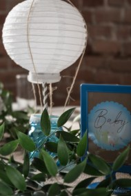 Rustic Baby Shower Blue Montreal