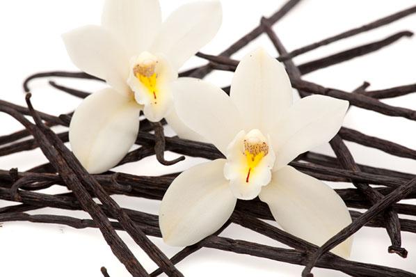 124_vanilla-iStock_000013465100Small
